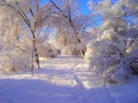Добрый День, 13 февраля 1982, Ханты-Мансийск, id179134247