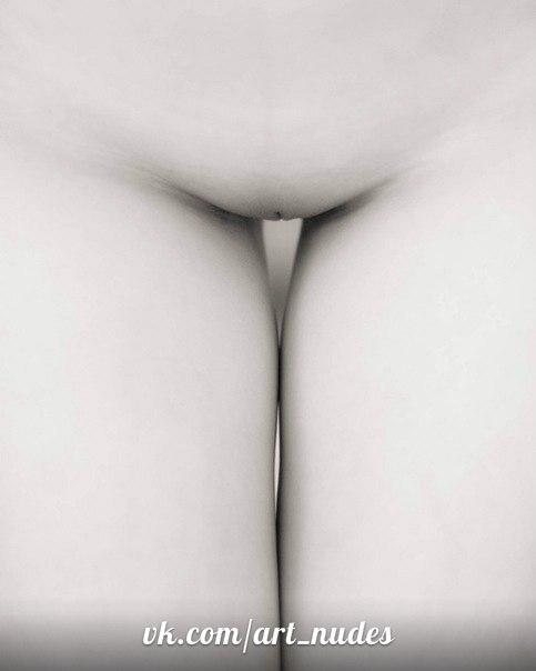фото вагин и ануса вблизи