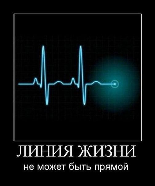 https://pp.vk.me/c307108/v307108882/2cad/bb3SszLpHtw.jpg