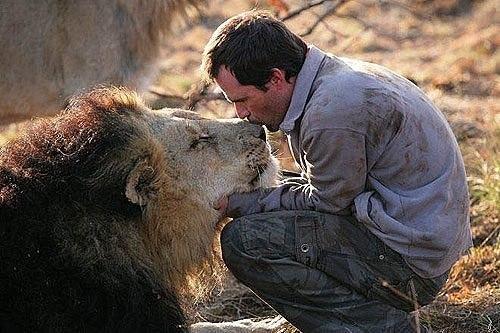 Занимательные истории о животных ,фото... - Страница 13 MO_Db8crv7Q
