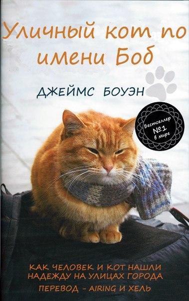 история знакомства боуэна и кота боба