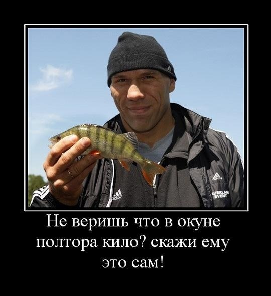 http://cs307112.vk.me/v307112242/6c94/NvctCXlEvMA.jpg