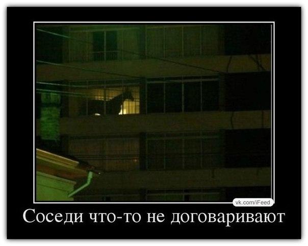 http://cs307113.userapi.com/v307113315/4943/y1uOZLOiJ4s.jpg