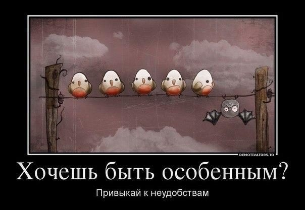 http://cs307113.userapi.com/v307113446/2244/DaXmHLI2rJ4.jpg