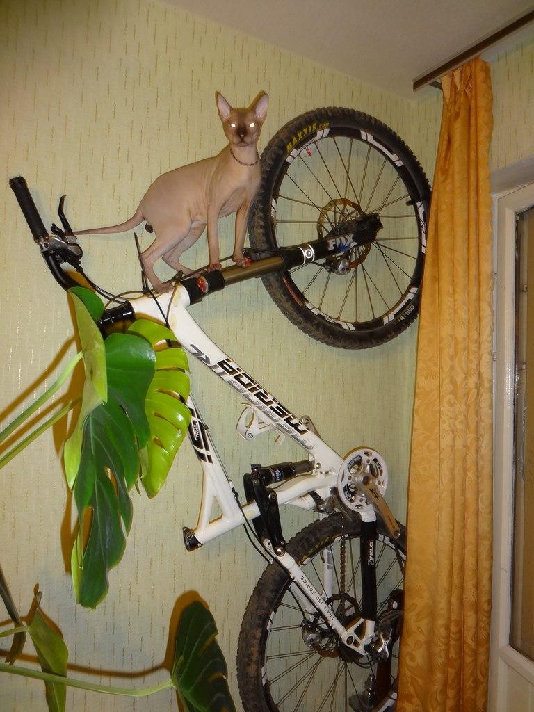 Дом для велосипеда своими руками.