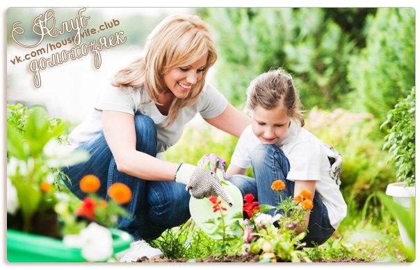 Маленькие секреты садоводу♥♥♥