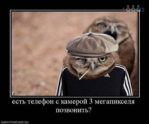http://cs307115.userapi.com/v307115570/4764/ylnYsghQJ6g.jpg
