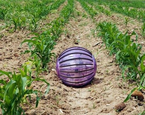 За растениями будет ухаживать робот-шар