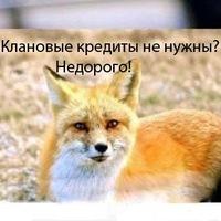 Павел Ростов, 15 апреля 1999, Каменногорск, id183600553