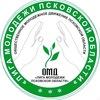 Лига Молодежи Псковской Области