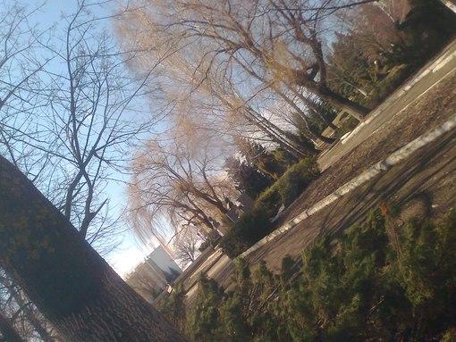 Погода в Окница (г ) - rp5 ru