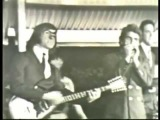 The Count Five-Psychotic Reaction (Version 1)