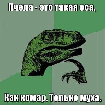 мем за мемом (Избранные приколы со всего рунета) | ВКонтакте