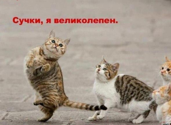 ХаХаХа))))