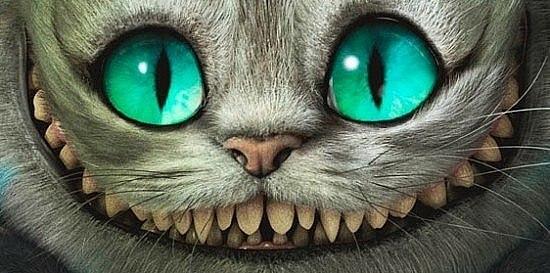 Фотография чеширского кота