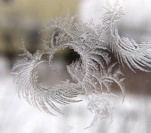 Льодяне серце. Візерунок морозу