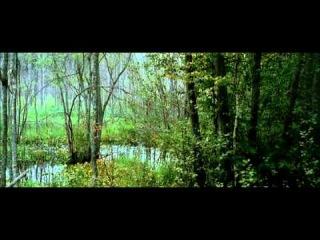 Побег. Фильм Егора Кончаловского. 2005г.avi