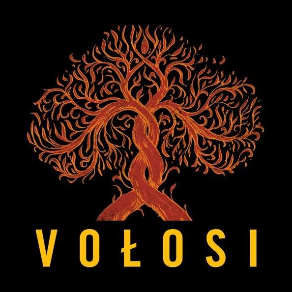 Концерт гурту Vołosi (Польща) в Києві 2013