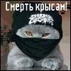 Светослав Швагурцев-Пашков, 7 января , Саранск, id175336184