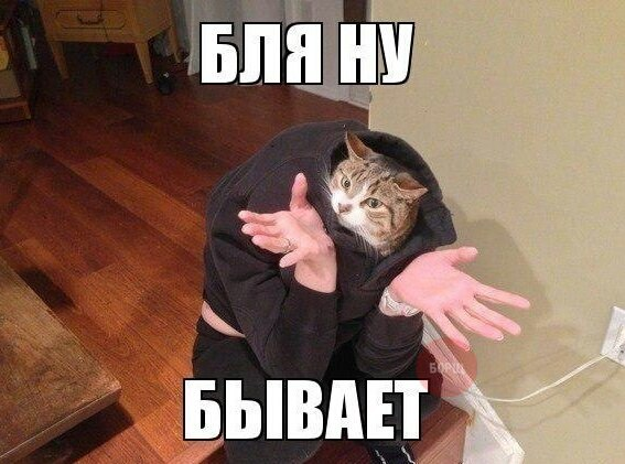http://cs307505.vk.me/v307505732/9859/lWNZ0rcsZXg.jpg