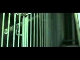 D POWER DIESLE - ME NOT YOU - OFFICIAL VIDEO