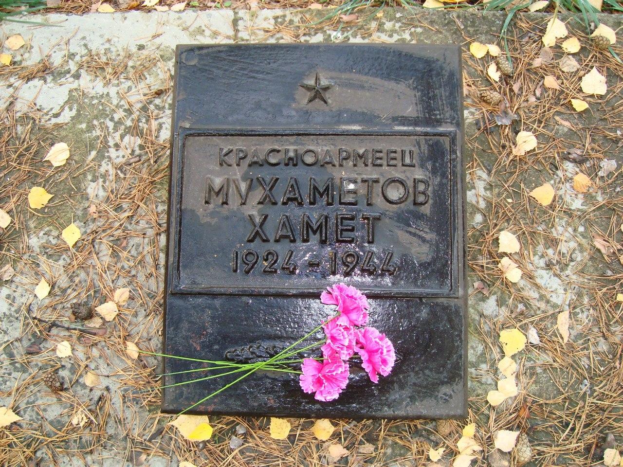 заельцовское кладбище новосибирск электронная карта
