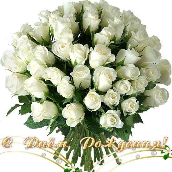 http://cs307605.vk.me/v307605786/775a/NSFxaiPjzpY.jpg