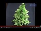 Как сделать елку оригами (видео урок) [uroki-online.com]