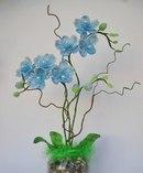 """270 грн.  Индейцы Амазонки дали орхидеям поэтичное название -  """"дочери воздуха """".  Высота около 46см."""
