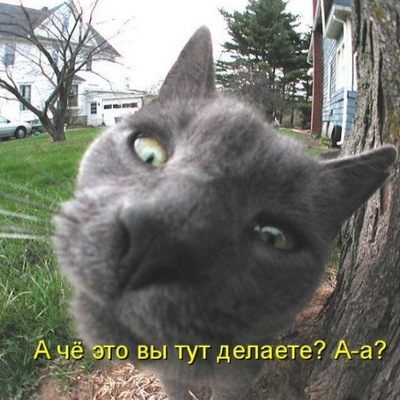 Мадина Жумабаева, 9 августа 1999, Сибай, id197695108