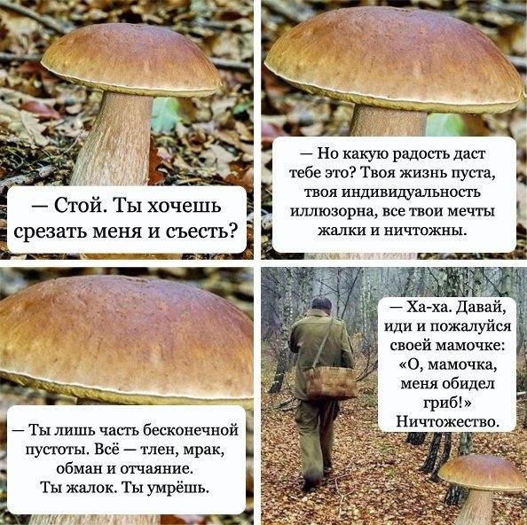 http://cs307614.userapi.com/v307614976/2791/56HSOfPe5ac.jpg