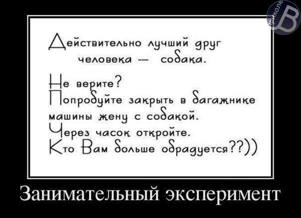 http://cs307704.vk.me/v307704159/a6aa/CHwpI4cFpQI.jpg