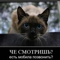 Евгений Есипов, 12 февраля , Архангельск, id165240311