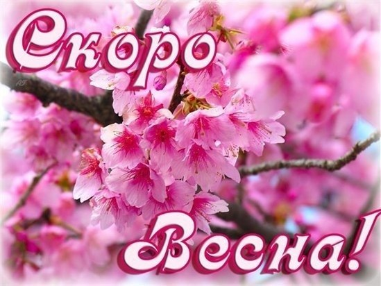 Ese cherry blossom art wallpaper amazing decor another time another world sakura brings hopes for