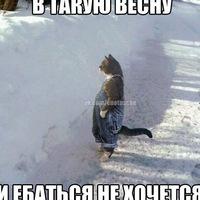 Ташев Дима