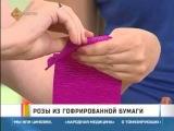 Розы из гофрированной бумаги (видео урок) [uroki-online.com]