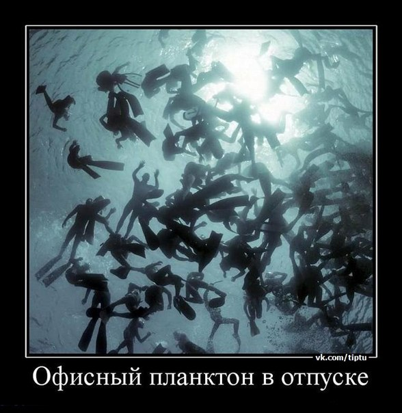 http://cs307802.vk.me/v307802386/70e8/NK1rPdP7kXw.jpg