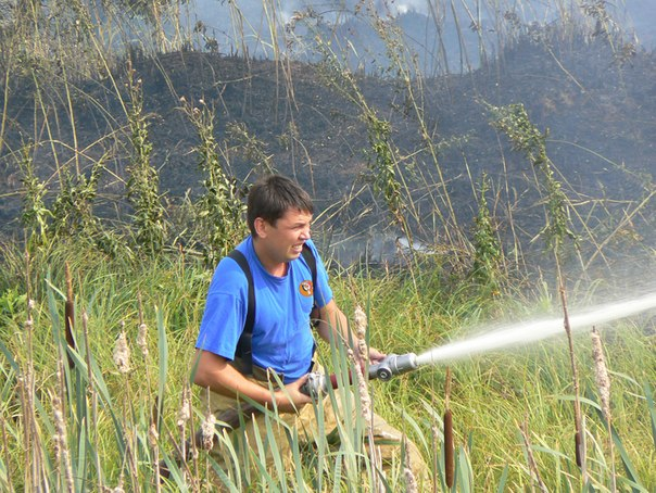 ...сгорело в Удмуртии 1200 рулонов соломы & nbsp; & nbsp; оказались охвачены пламенем в Завьяловском районе...