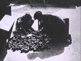 Вторая мировая - Случайная война. 2 серия - Семейные тайны и сладость мести
