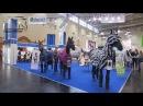 Spoga horse 2013
