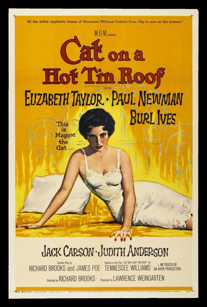 gender roles in cat on a hot tin roof