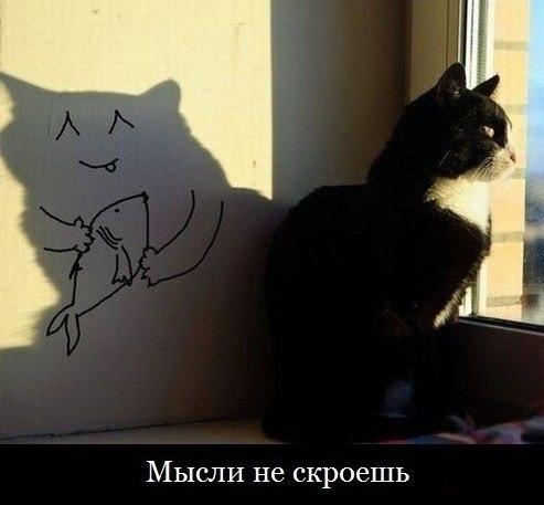 http://cs307812.vk.me/v307812662/aed9/NYR1XdwzZGo.jpg