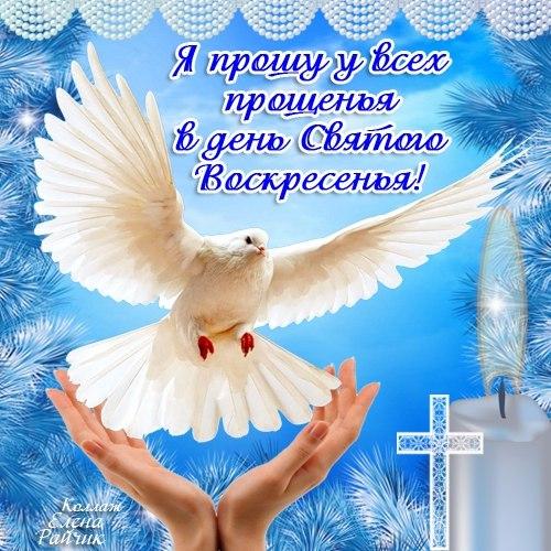 http://cs307814.vk.me/v307814786/26690/zEDMSc0ftPI.jpg