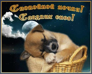 http://cs307905.vk.me/v307905163/3f56/-yuWULHChBs.jpg