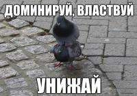 Влад Кэп, 15 декабря , Москва, id177537312
