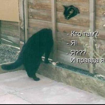 Александр Трофименко, 21 октября 1999, Одинцово, id105635233