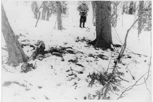 гибели группы Дятлова