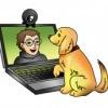Семинары и вебинары о собаках от школы Компаньон