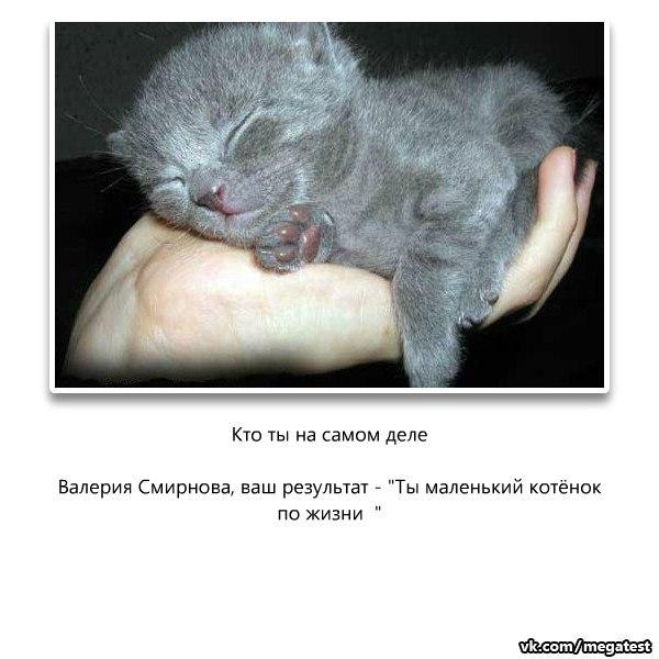 Валерия Смирнова, Запорожье - фото №3