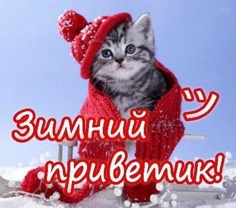 Светик Байбуз, Старовеличковская - фото №12